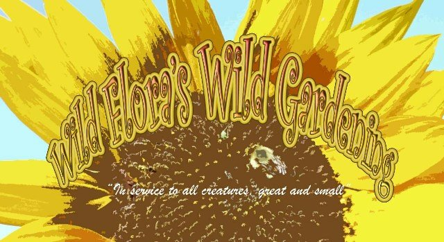 Wild Flora&#39;s Wild Gardening