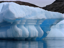 Iceberg in Nordvest Fjord, Scorsebysund