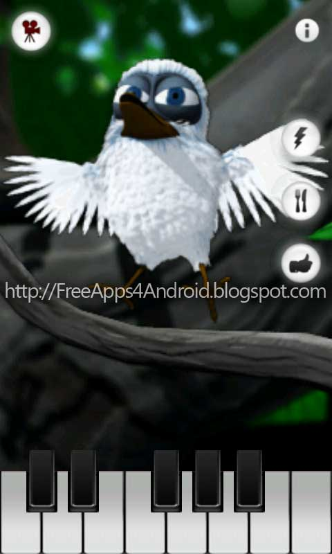 larry bird wallpapers. Talking Larry the Bird can whistle and talk. Talking Larry the Bird is your