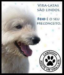 ADOTAR É TUDO DE BOM!!!!