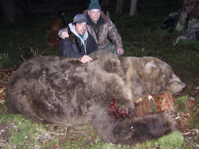 Biggest Grizzly Bear In The World | Share The Knownledge