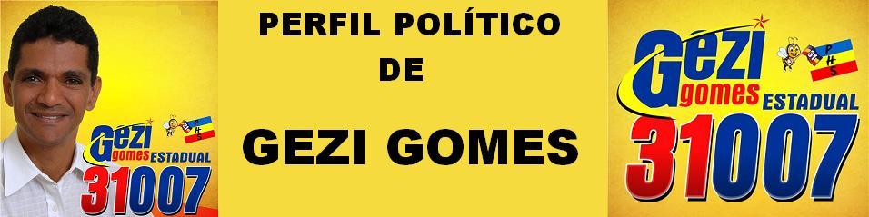 PERFIL POLÍTICO DE GEZI GOMES
