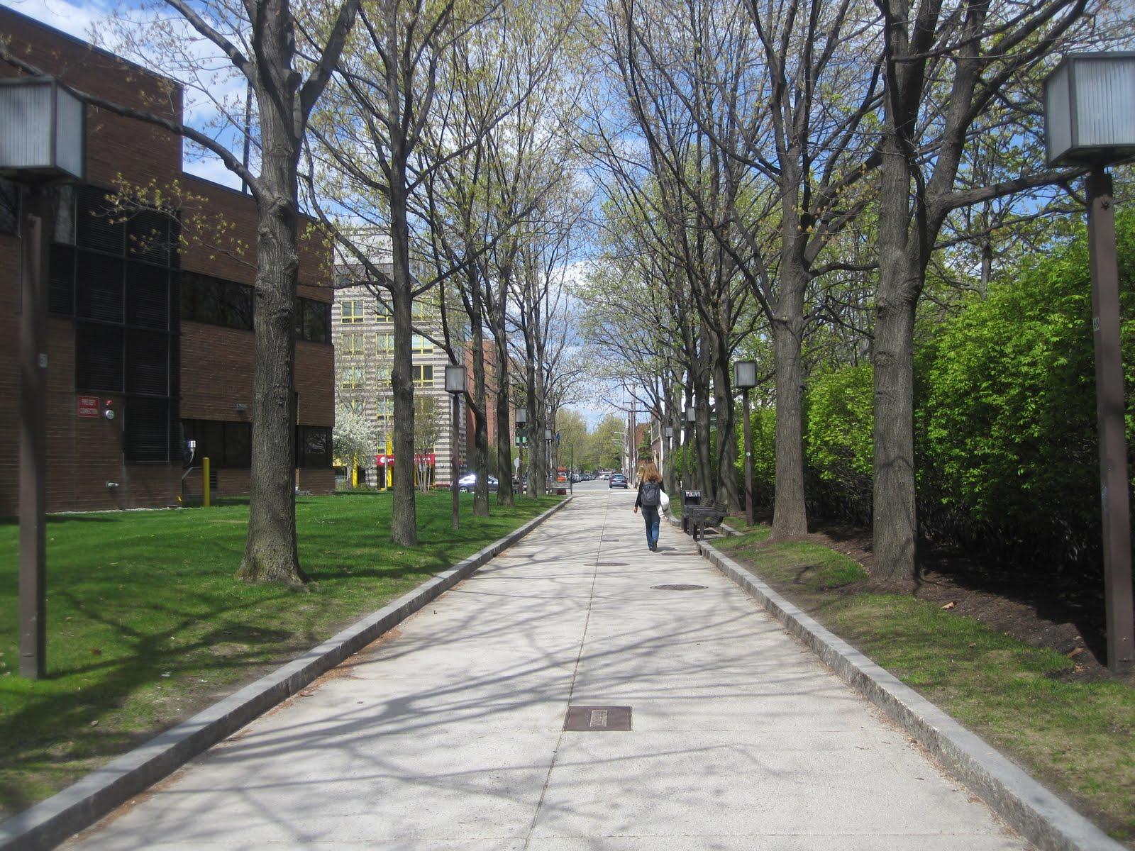 Calm Streets Boston: Effective Crosswalk At Binney & 6th