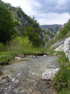 Cheile Tesnei Herculane