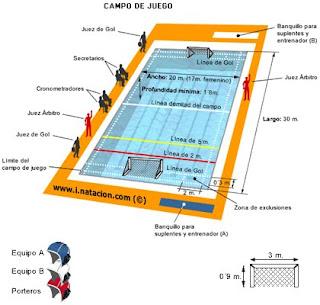Waterpolo el waterpolo - Medidas de una piscina olimpica ...