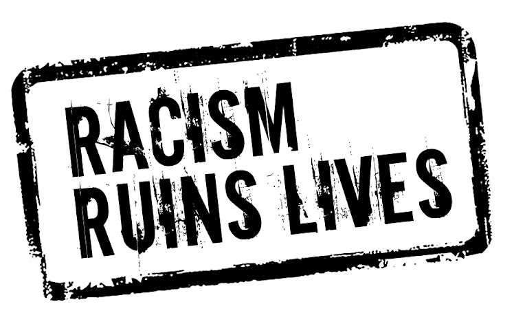 racism and immigrants essays