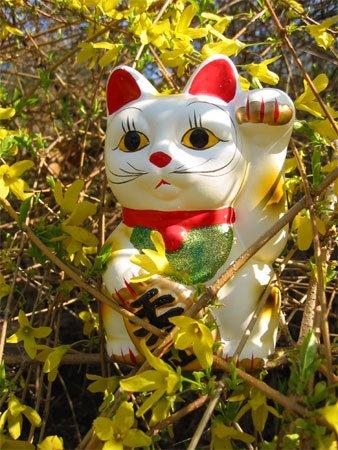 [gato_maneki_neko.jpg]