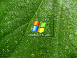 Windows Vista HD Wallpapers 21 Images, Picture, Photos, Wallpapers