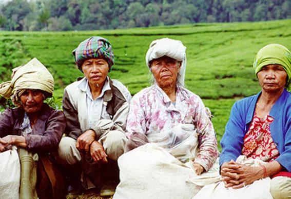 Mind Blog: Masyarakat Pedesaan & Masyarakat Perkotaan