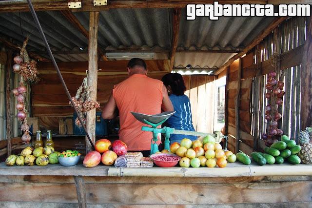 Puesto ilegal de frutas y hortalizas en el arcén de la carretera