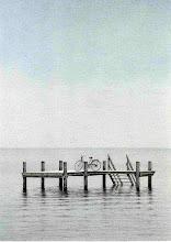 las bicicletas inspiran a mares