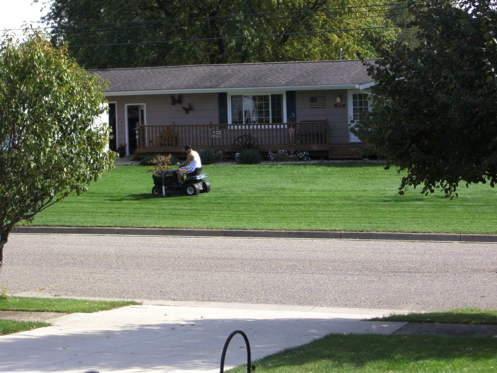 nick s photo essay small town life  a young man mows carefully around a small tree at his home in dexter during a hot day many of the yards in the town are quite spacious