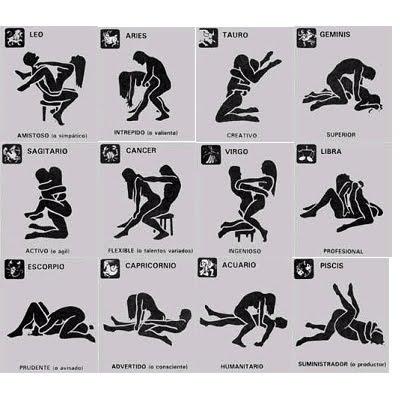 el sexo sexualidad: