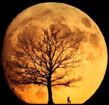 Romance a la Luna
