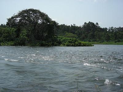 Left: Nile; Right: Lake Victoria