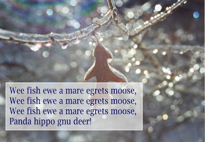 Wee fish ewe a mare egrets moose