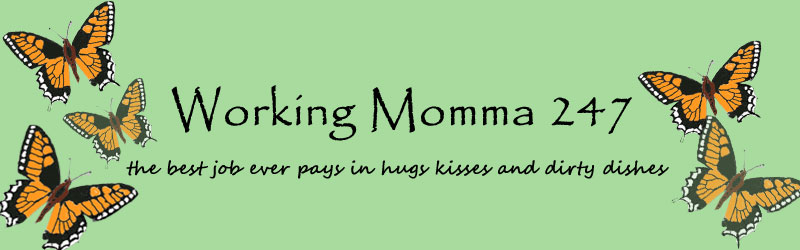 Working Momma 247