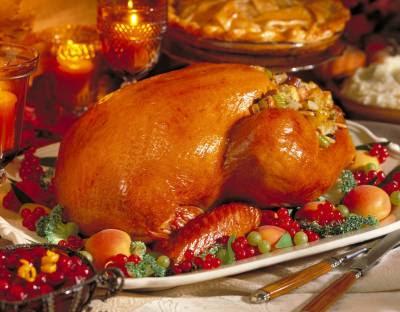 Happy Thanksgiving! Turkey_01_thumb