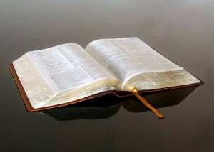 Bosquejo de los Libros de La Biblia