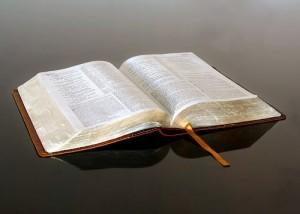 Bosquejo de los Libros de La Biblia