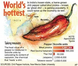 World Hottest Chili