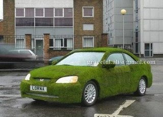 Garden on the car - Amazing car
