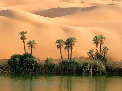 beautiful desert pictures