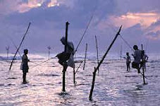Stilt fishermen at Galle, Sri Lanka