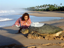 Every breath you take, every move you make: Rekawa Beach, Western Coast, Sri Lanka