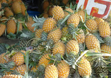"Sweetest fruit in the World, Sri Lanka""s Pineapples along Colombo-Kandy Rd"