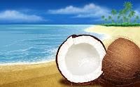 papel de parede Coco na praia