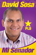 David Sosa Mi Senador