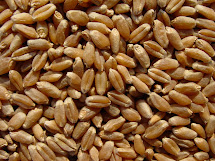 Buy Whole Grains Online