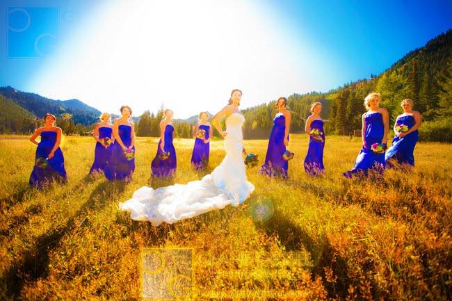 best seattle wedding photographers, top seattle wedding photographers