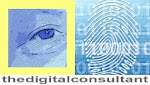The Digital Consultant