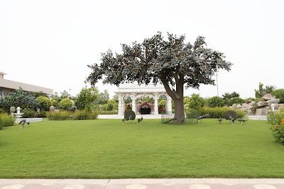 JKP Barsana Dham Garden 1 Swami Prakashanand Saraswati