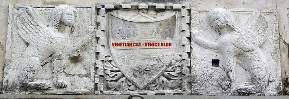 Venetian Cat Bauer - The Venice Blog