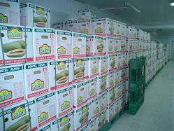 HK Papaya 10kgs