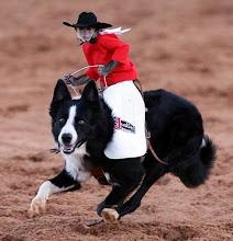 Ride 'em monkey cowboy!