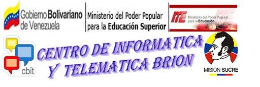 CENTRO DE INFORMATICA Y TELEMATICA BRION