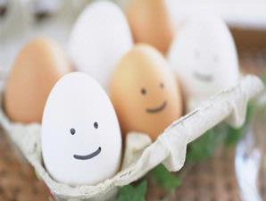 Kulit Telur Berharga Puluhan Juta