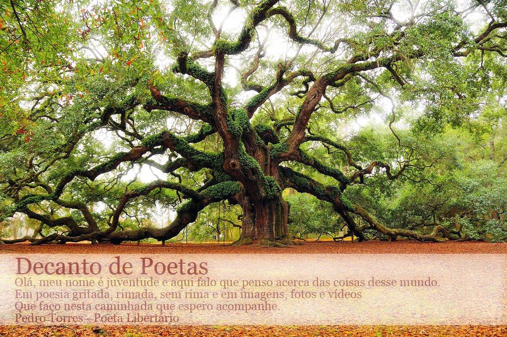 Decanto de Poetas