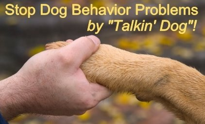 "Stop Dog Behavior Problems by ""Talkin' Dog""!"