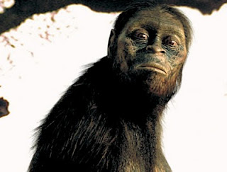 Recreacin de la 'Australopithecus afarensis', 'Lucy'. FRANCE 3