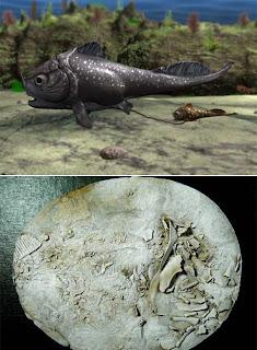 El registro más antiguo de parto vivíparo