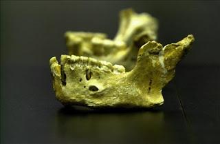 En Europa había tres grupos de neandertales. EFE