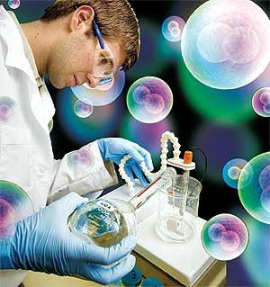 El primer medicamento europeo basado en células madre de la grasa