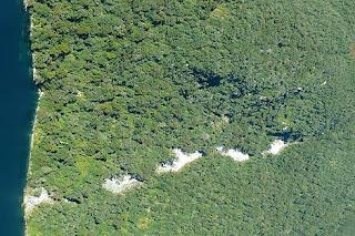 Corrimiento de tierra en Nueva Zelanda provocado por el terremoto. Ap Photo