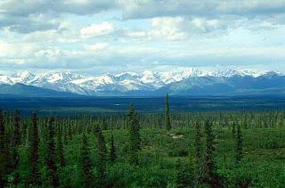 Imagen de taiga en Alaska. NOAA