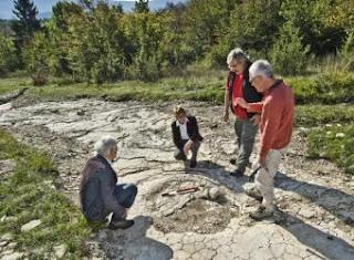Una de las huellas de dinosaurio halladas en Plagne - AFP